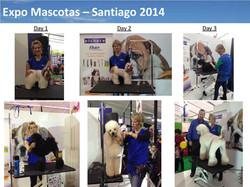Expo Mascotas - 2014-page-003