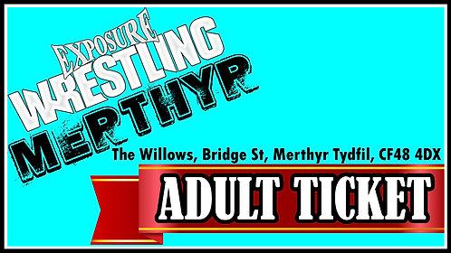 Merthyr Adult Ticket: 22/11/20