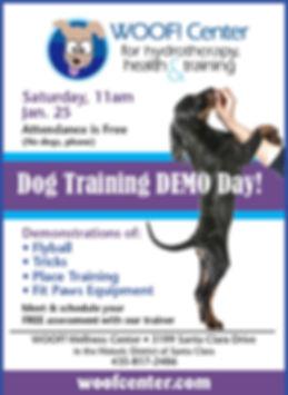 DemoDog Ad.jpg