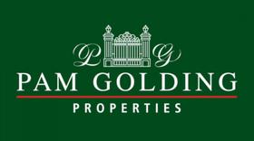 Pam Golding Logo.png