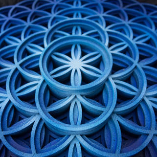 Fruition - Close up Blue