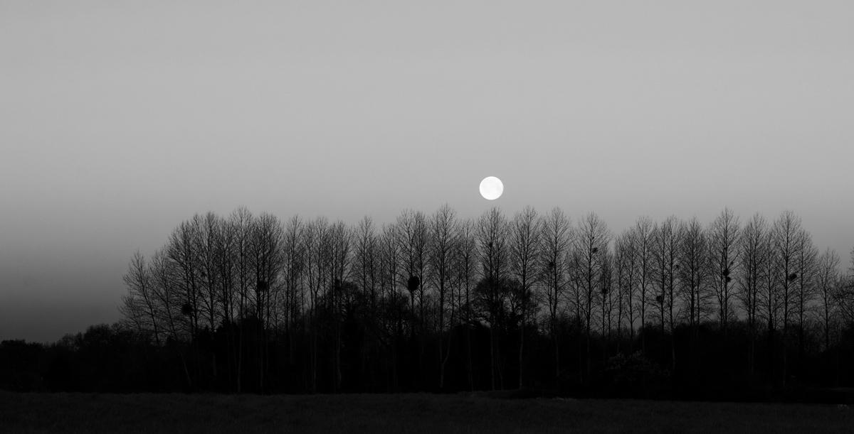 j ai demandé& a la lune