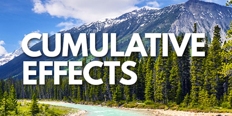 Cumulative Effects 2020