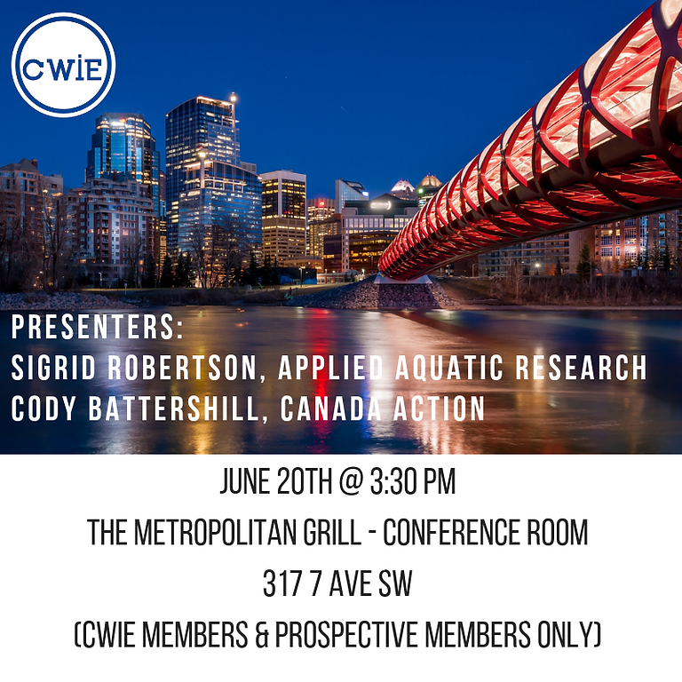 CWIE Technical Session - JUNE 2019 (CWIE MEMBERS AND PROSPECTIVE MEMBERS ONLY)