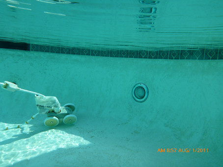 Dallas Inspector Finds Swimming Pool In Rough Shape