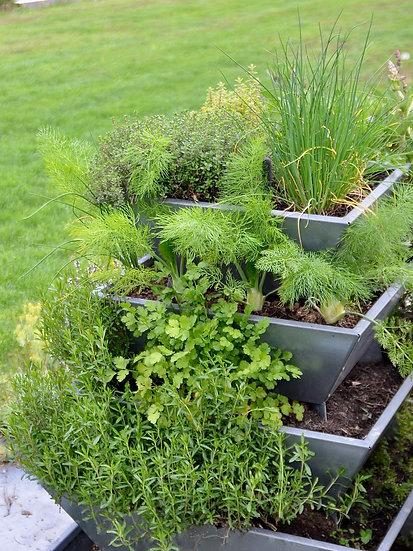 Pflanzenpyramide auf verzinktem Blech - Kräuter, Blumen, Gemüse