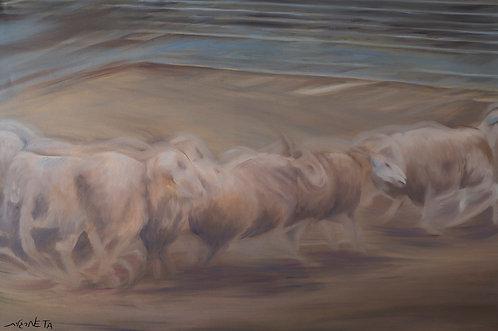 Flock of sheet by  Neta Margalit