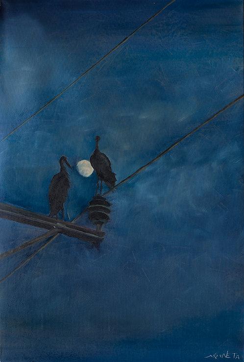 Night romance by  Neta Margalit