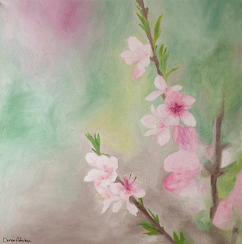 Almond blossom by  Doron Adorian