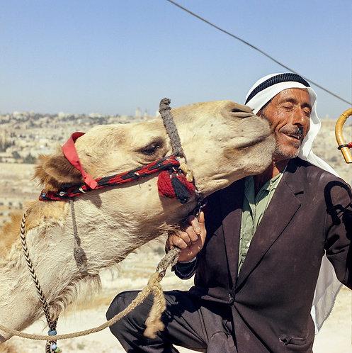 Jerusalem, Friends #1  By Jacob Elbaz