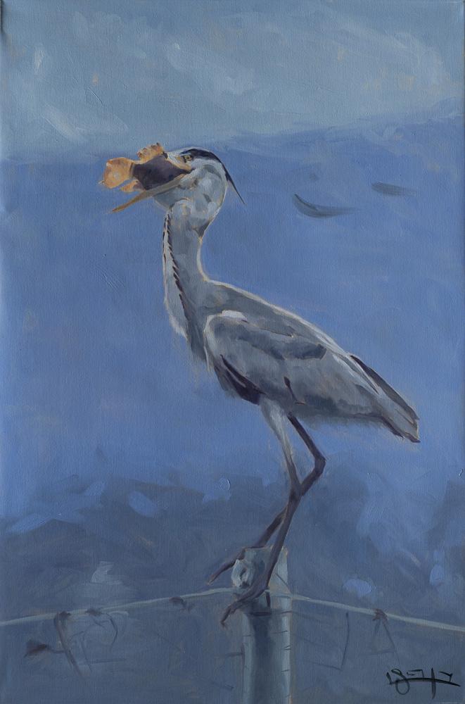 Bird eating fish by  Ben Fried