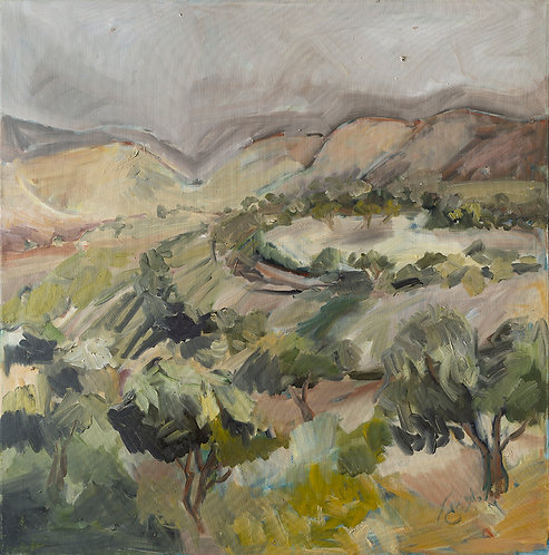 Olive trees By Ruthy Segal