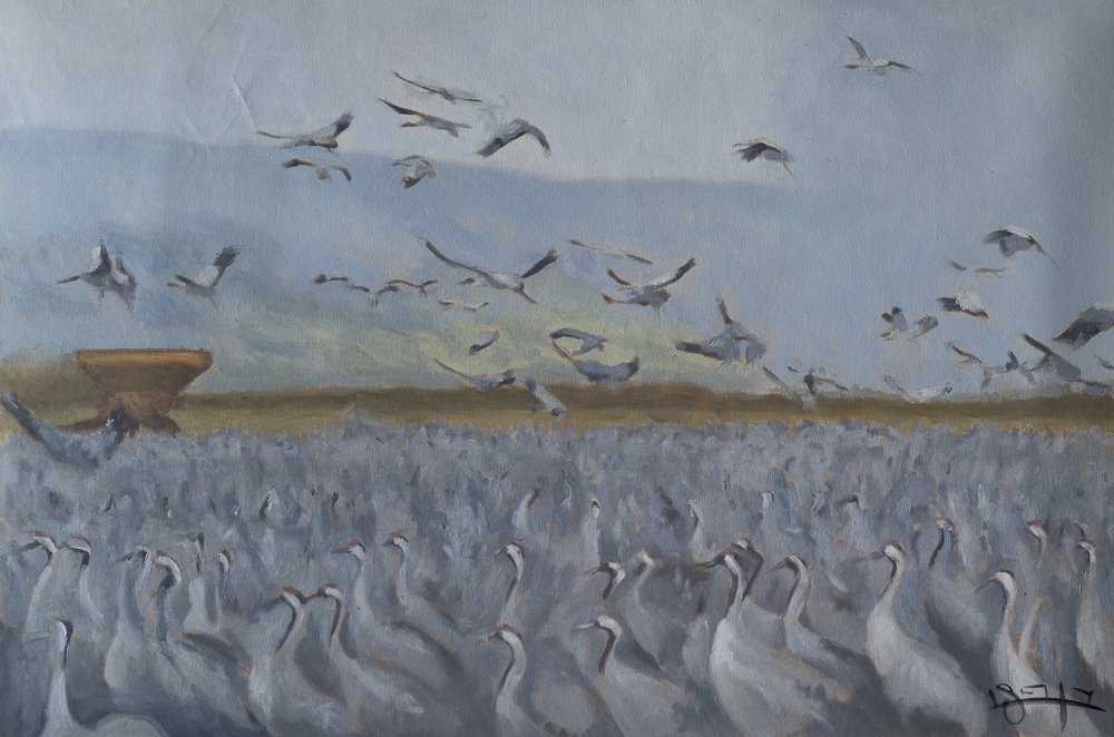 Cranes by  Ben Fried