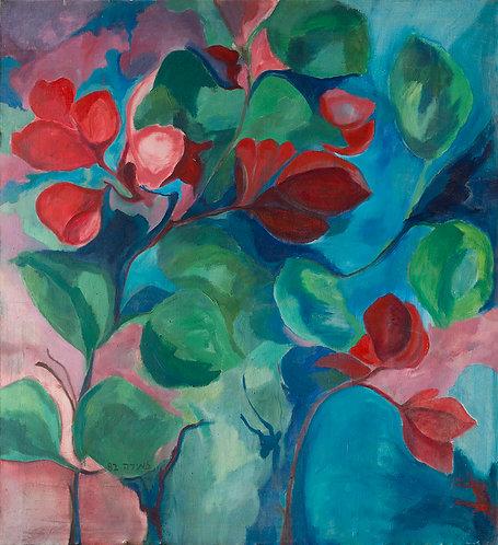 Geranium By Zmira Lapidot
