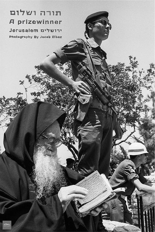Torah and Peace