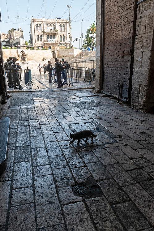 Jerusalem, Everyday life #98  By Jacob Elbaz