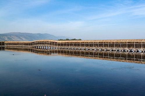 The Bridge - Hula Nature Reserve