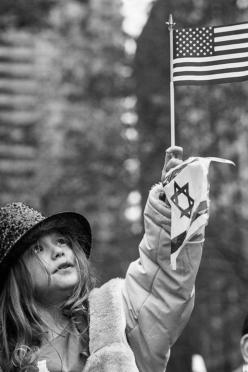 New York, The Flag #3  By Jacob Elbaz