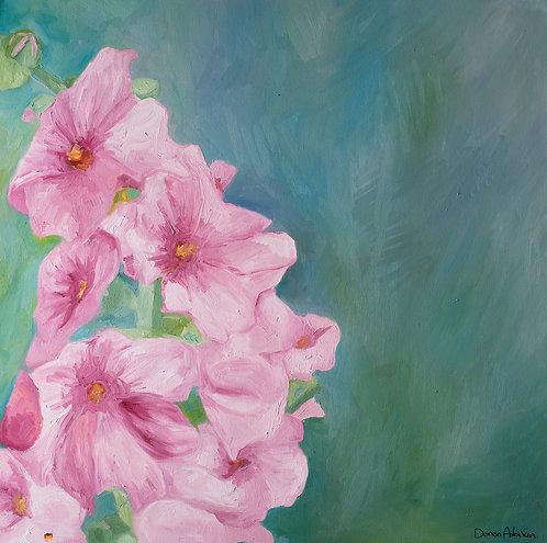Pink blossom by  Doron Adorian