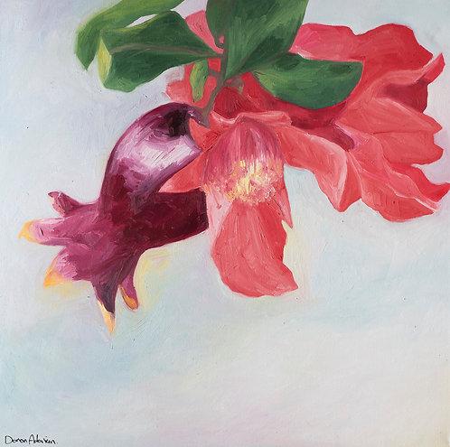 Pomegrant by  Doron Adorian