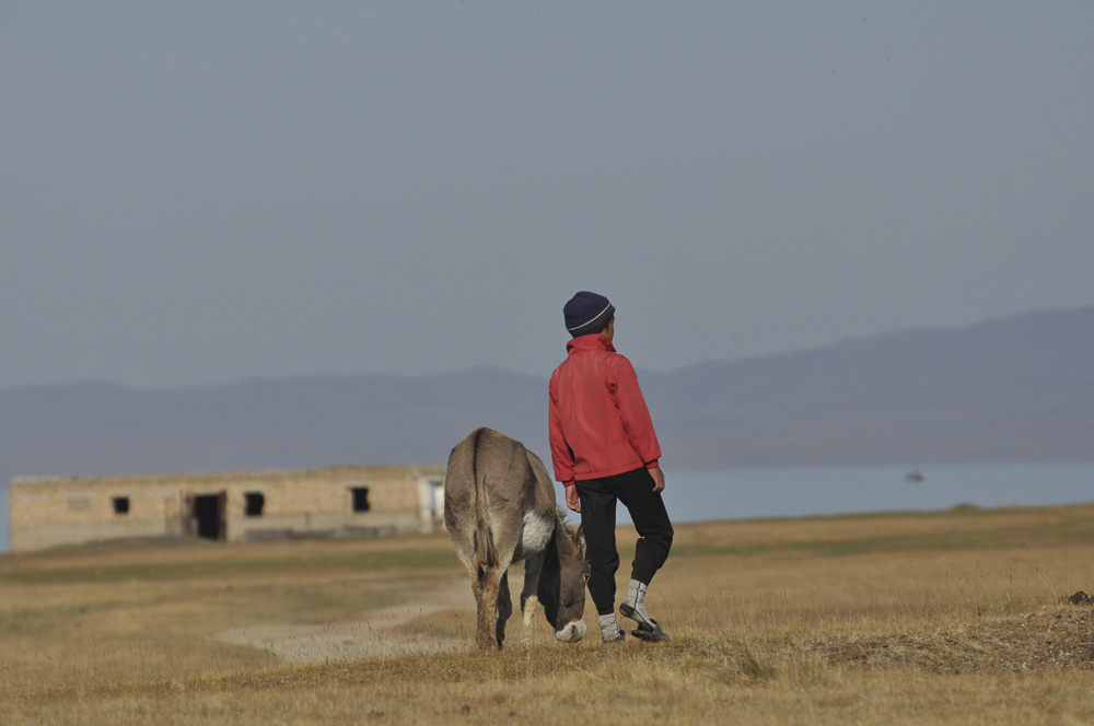 A boy and a donkey in Kirghystan