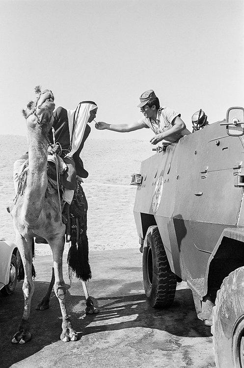 Israel, Sinai. Common ground #1  By Jacob Elbaz