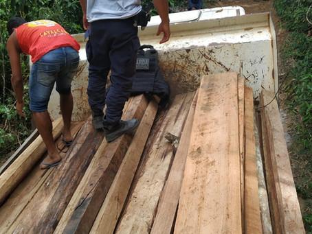 Madeira ilegal é apreendida em Amargosa