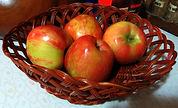 Apples in Basket.jpg