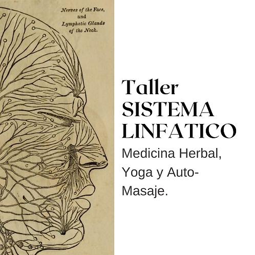 Taller Sistema Linfático: auto-masaje, Yoga y Medicina Herbal