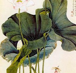Chinese traditional Lotus painting….jpg
