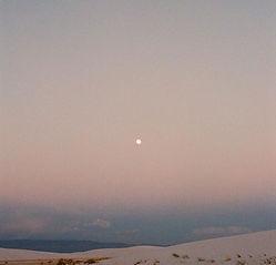 desert dreams 🌙.jpg
