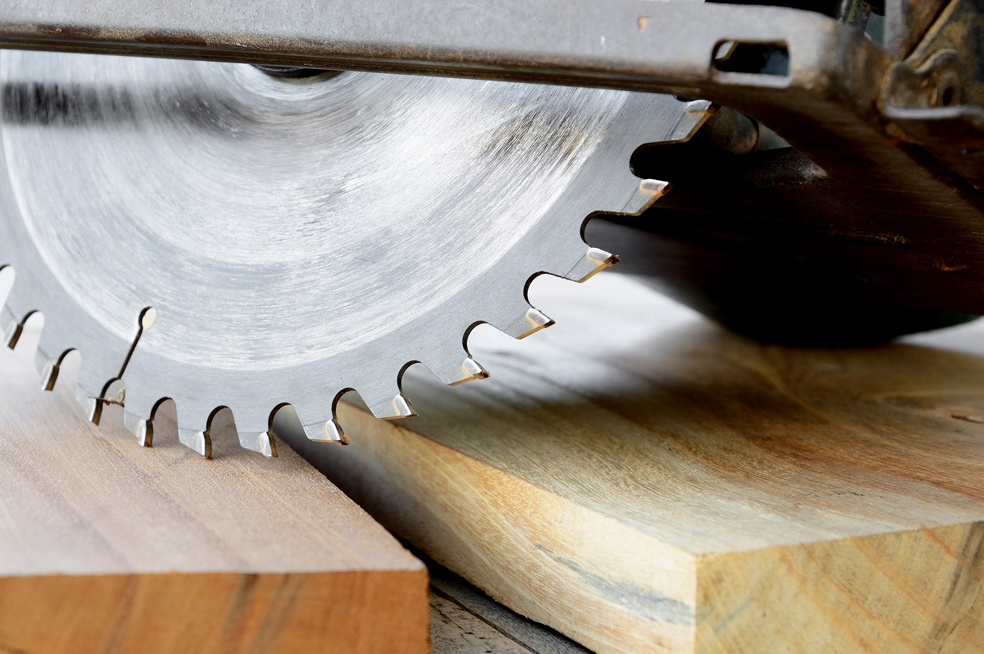 circular-saw-web
