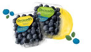 DRISCOLL'S, Organic Blueberries