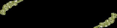 SİNOSELO DAVETİYE-05.png