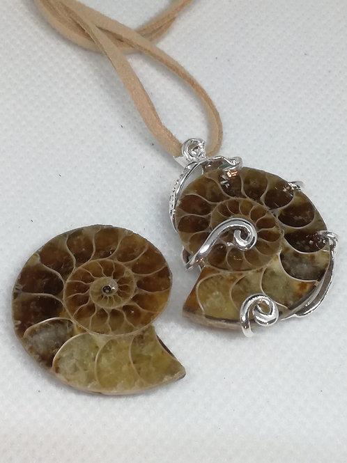 Coppia di Ammonite Fossile, una con Ciondolo realizzato a mano