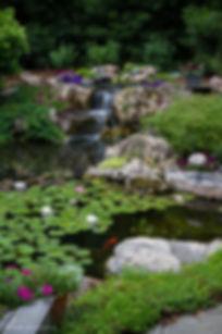 Pond_75.jpg