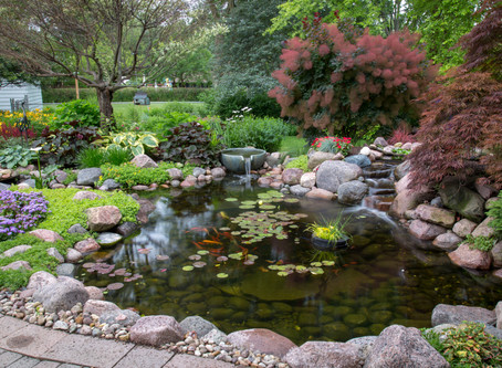 How Much Does A Backyard Koi Pond Cost?