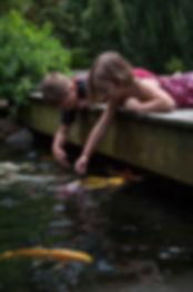 Kids feeding koi in a ecosystem pond