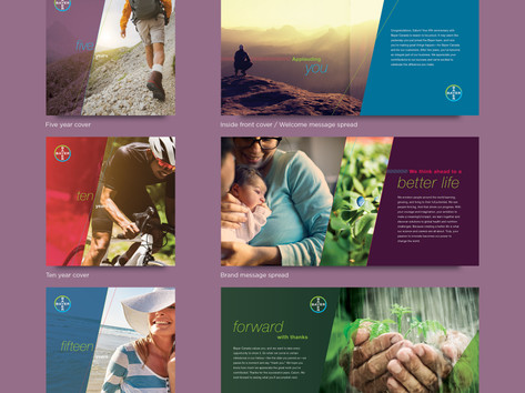 Bayer Yearbook Design