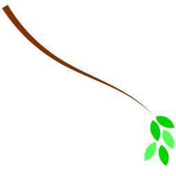 branch2.png