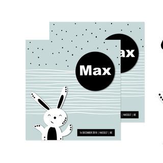 Geboorte Max Bex