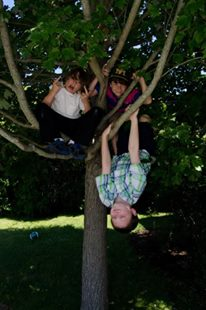 BOYS IN TREES
