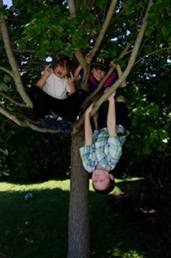 BOYS IN TREES