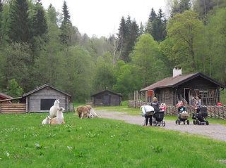 Fäboden-Säterdalen-1024x570.jpg