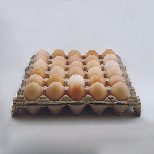 Huevo Fresco de Libre Pastoreo, 30 piezas