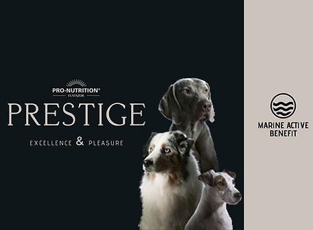 prestige-blog.jpg