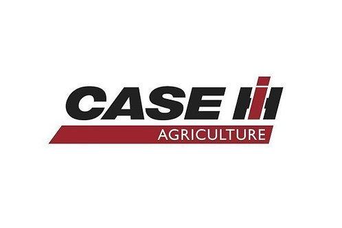 CASE CS 100