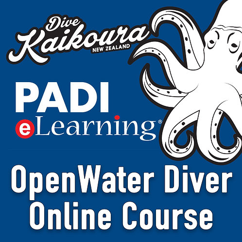 PADI OpenWater Diver Online Course