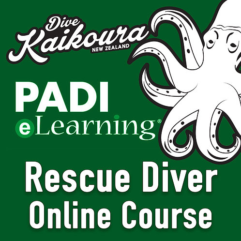 PADI Rescue Diver Online Course