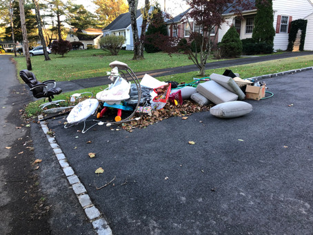 A Removal and Disposal Job in Mountain Lakes